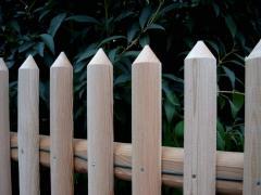 Ogrodzenia sztachetowe z modrzewia syberyjskiego