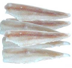 Mintaj Filet- EUROFISH POLAND Sp. z o.o.®