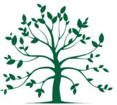 Drzewka liściaste