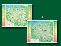 MAPA EKOLOGII / OCHRONA PRZYRODY W SKALI 1:600