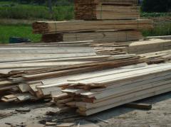 Oferujemy podbitkę i krawędziaki drewniane