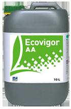 Nawóz na bazie melasy oraz alg Ecovigor AA