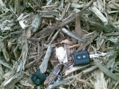 Biomasa drzewna na cele energetyczne