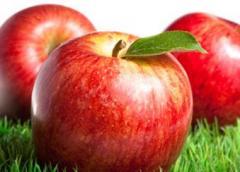 Jabłka, różne odmiany.
