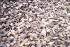Biopaliwa - Palm Kernel Shell (PKS)
