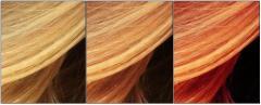 Hair-dye
