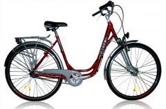 Rower Premium 2010
