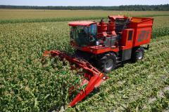 Kombajn do zbioru kolb kukurydzy B1