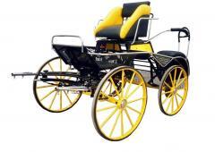 Powóz konny żółty/ Kutschen