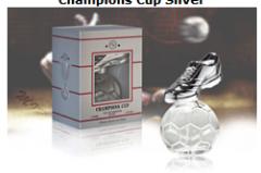Champion Cap Silver