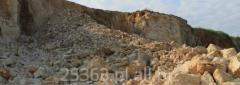Kamień wapienny
