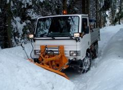 Mounted snow plows