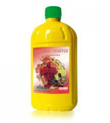 Nawóz do begonii Begonia Starter
