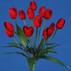 Bukiet Tulipan