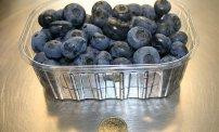 Owoce borówki amerykańskiej.