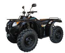 Quad ATV z silnikiem 16,8KM.