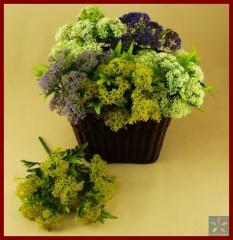 Artificial flora arrangements
