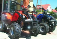 Quad 110 Hummer Lux 2011