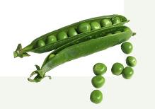 Peas pepper