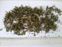 Medical herbals