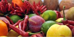 Warzywa świeże: marchew, cebula, czosnek, bakłażan, kukurydza i wiele innych
