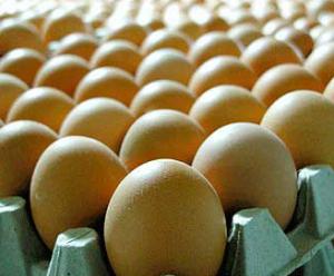 Eggs, hen