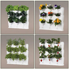 Zielona ściana - mini garden