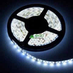Wodoodporna taśma LED SMD 3528 30led/m, biała