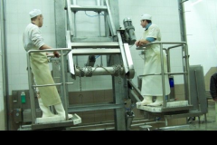 Technological lines for meat-packings plants