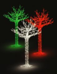 Drzewo świetlne