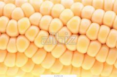 Marinated corn
