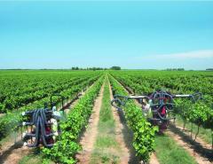 Opryskiwacze do winorośli Zaturn