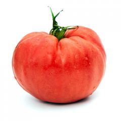 Pomidor mięsisty 200g i więcej