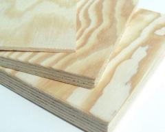 Sklejka z drewna iglastego, liściastego,