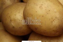Table potatoes