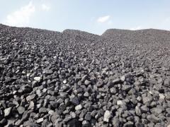 Węgli kamienne i brunatne