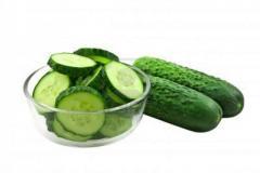 Bush cucumbers