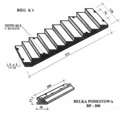 Ferro-concrete steps ladder
