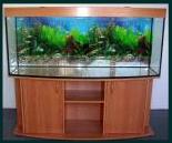 Akwarium owalne