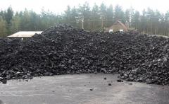 Organic carbon