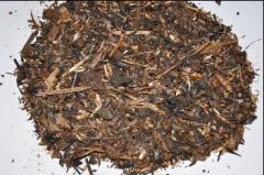 Mieszanka rzepak-słonecznik; biomasa