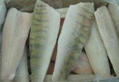 Fish fillets