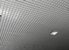 Suspended raster ceilings
