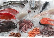 Ryby mrożone