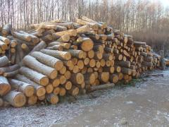Wood for smoking beech