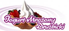 Jogurt mrożony drużbicki