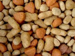 Fodder dry for cats
