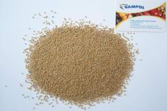 Oil-bearing crop seeds