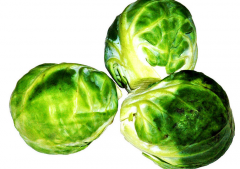 Brussels cabbage