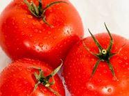 Pomidory polskich odmian